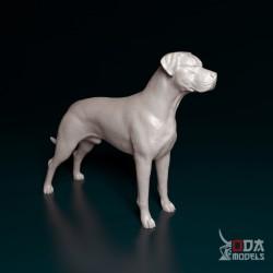Maya, high priestess